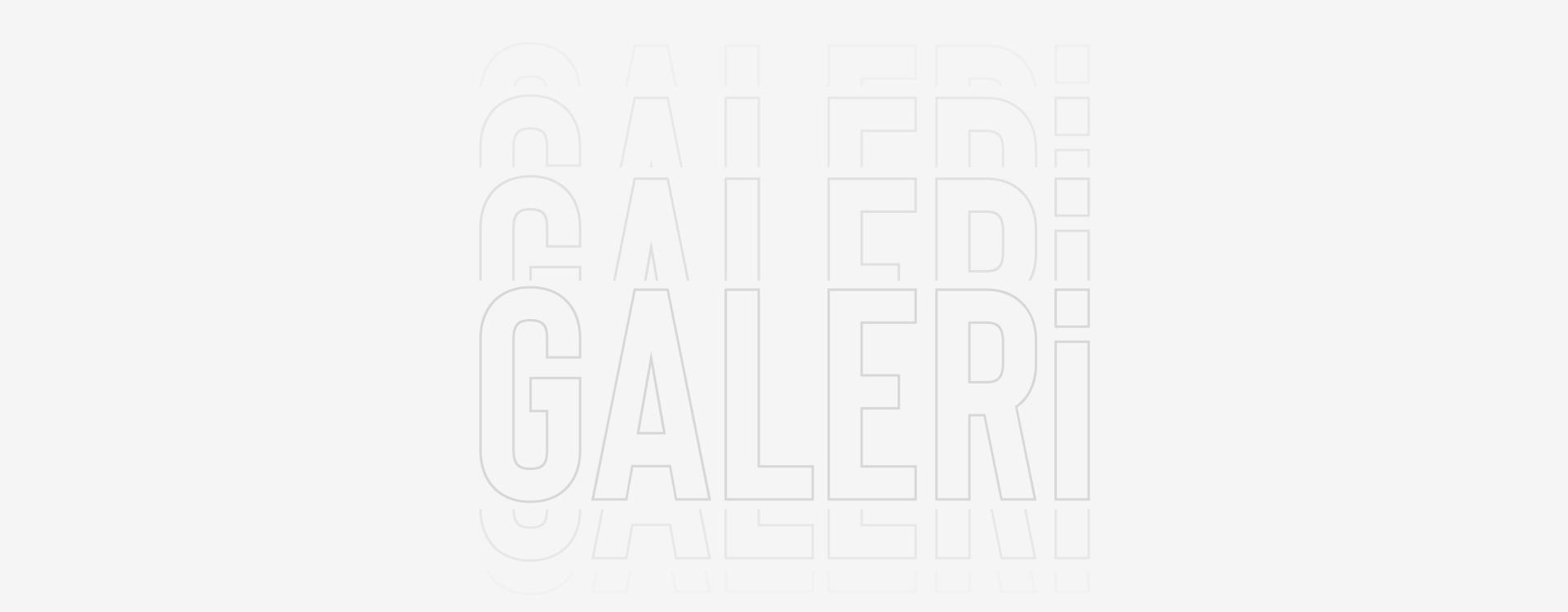 Galeri Sayfa Görseli